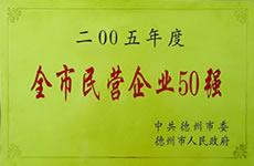 2005全市民营企业50强